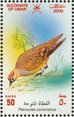 Crowned Sandgrouse stamps - mainly images - gallery format