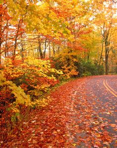 New England in Fall | New England : cranberrycorner.se
