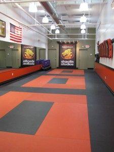 Steve DeMasco's Shaolin Studios