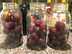 how to make plum brandy recipe
