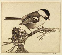Charles Emile Heil (American, 1870 - 1953) - Black-Cap Chickadee - Etching, 1926