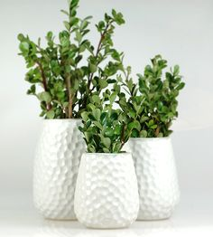 Punch Texture Stoneware Vase Trio | If all good things come in threes, than this adorable trio of ... | Vases