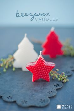 Cookie Cutter Beeswax Candles | Maker Crate                                                                                                                                                                                 More