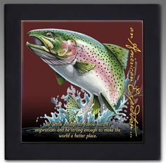 Rainbow trout location in the great north woods nh akers for Best trout fishing in ct