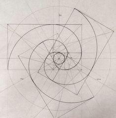 Triple Fibonacci spirals