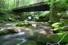Smoky Mts Nat Park