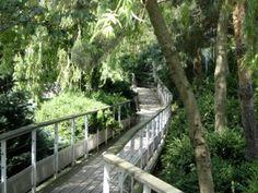Jardin Atlantique Boardwalk, Paris