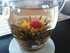 flowering jasmine green tea ♥ beautiful ♥