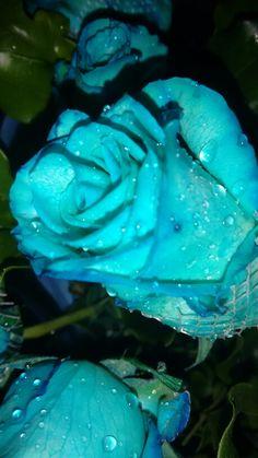 Porque Azul é SIM a cor mais Quente!!!