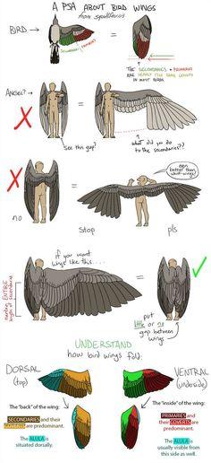 날개 그릴 때 주의