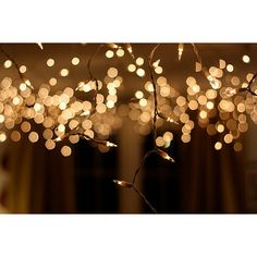 New Year's Eve 2012 - Collar City Brownstone ❤ liked on Polyvore featuring backgrounds, pictures, photos, pics, fondos, fillers, quotes, text, phrase and saying