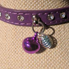 Opal pet collars.