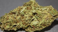 Buy OG Kush inside our Dispensary Cannabis Seeds Online, Cannabis Seeds For Sale, Cannabis Shop, Autoflowering Seeds, Weed Strains, Shopping