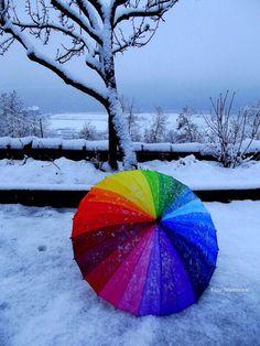 rainbow http://arcreactions.com/services/seo/