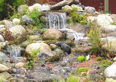 original cascada jardin aspecto natural