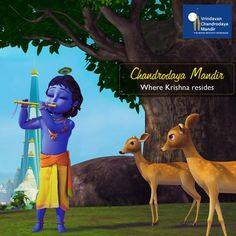 We are raising this great temple for #LordKrishna with the helping hands of all devotees -
