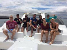 Kelp Forest, Shipwreck, Cape Town, Scuba Diving, Shark, Diving, Sharks