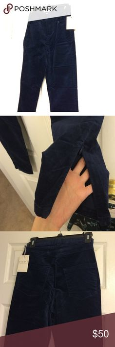 Blue velvet pants Limited edition LC Lauren Conrad runway. Invisible zipper and bottom of pants. 98% cotton, 2% spandex. High waisted. LC Lauren Conrad Pants