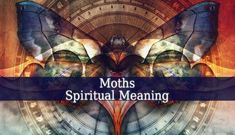 Moths Spiritual Meaning. Moths symbolize many things from a message to transformation needed in your life. It symbolizes faith, hope and vulnerability.