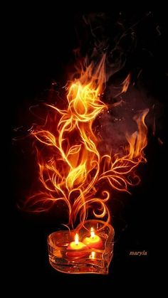 Fire Rose ~A collection of CLICK ON THE PICTURE (gif) AN WATCH IT COME TO LIFE. ....♡♥♡♥♡♥Love★it