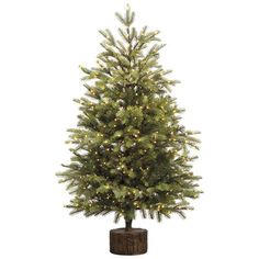 3.5' Pine Artificial Christmas Tree with Rice Lights, Pier one