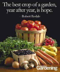 Robert rodale quotes