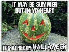 Halloween Humor – Summer's Coming Halloween Meme, Halloween Quotes, Halloween Horror, Vintage Halloween, Fall Halloween, Happy Halloween, Halloween Countdown, Spooky Memes, Halloween Ideas
