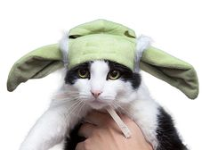 Honor the wisdom in your feline friend by trying to put this Star Wars Yoda Cat Hood on him or her.