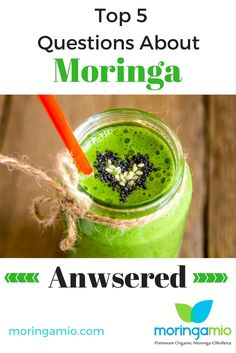 Moringa Benefits, Amino Acids, Vitamins And Minerals, Superfood, Herbs, Organic, Earth, This Or That Questions, Natural
