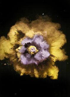 Explosions by Nick Knight, 2005.