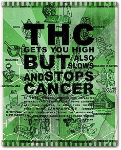 #Cannabis truths - Juicing the leaves also fights cancer and doesn't get you high.