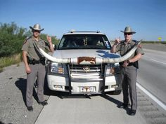 Texas Highway Patrol. Worked with a few at my duty station. Great guys and they don't put up with any crap! They're awesome