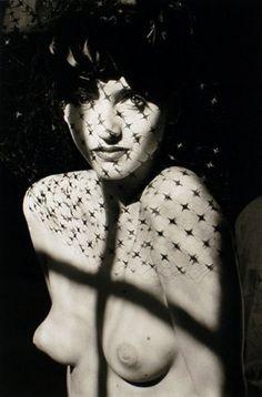 Les albums de Céline E.: Le Soleil sous la Soie - Opus 2