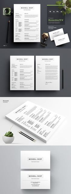 Resume/CV Word + Indesign Business Infographic UI Pinterest
