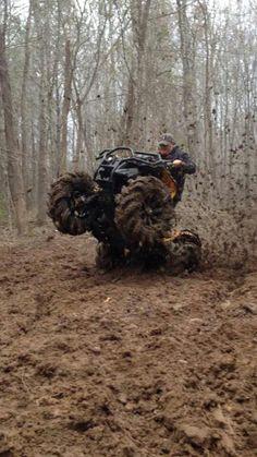 Ride That Hog!
