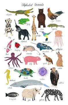 Alphabet Animal Poster- Limited edition prints www.shopchristinasong.com #print #illustration #animals #lettering #art