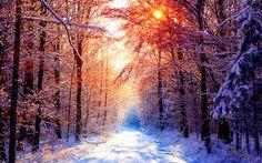 Winter Sunset Wallpaper Desktop Computer #12793 Wallpaper | Cool Wallpaper HDwallpaperfun.com