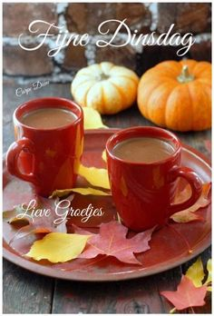 Rich and layered with flavor, this Pumpkin Mexican Hot Chocolate recipe is a fall-pleaser with cinnamon, ancho chile, deep chocolate and pumpkin. I Love Coffee, Coffee Break, Coffee Time, Morning Coffee, Tea Time, Chocolate Cafe, Mexican Hot Chocolate, Autumn Tea, Autumn Cozy