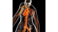 Stampare vasi sanguigni in 3D http://www.sapereweb.it/stampare-vasi-sanguigni-in-3d/         (foto: SEBASTIAN KAULITZKI/Science Photo Library/Corbis)  Presto la stampa 3D potrebbe rivoluzionare anche il mondo della medicina. Oggi in effetti si stampano già protesi, denti e impianti per operazioni chirurgiche, e a volte anche oggetti meno utili, come il feto del proprio...