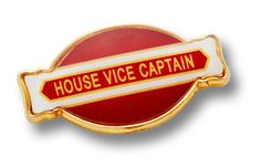 Make Impression with our Innovative Oval School Badge School Badges, Good Student, Name Badges, We Are The Ones, Colour Combinations, School Uniform, Alternative, Display, Shape