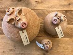 Schweinchen Dolly, Molly und Olly – Keramik – Home crafts Pottery Animals, Ceramic Animals, Pig Cookies, Expressive Art, Drops Design, Pottery Designs, Primitive Christmas, Sculpture Clay, Clay Crafts