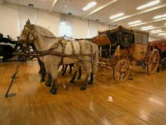 Royal 18th Century carriage. Schonbrunn Palace, Vienna