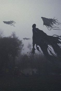 When the Dementors came, Madam Maleficare was furious, but she let them in, but warned the ministry, that her nor her students will be responsible if any of those beings were to...suddenly disappear