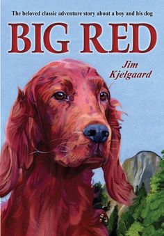 Big Red: The Story of a Champion Irish Setter and a Trapper's Son Who Grew Up Together, Roaming the Winderness by Jim Kjelgaard,http://www.amazon.com/dp/0823423913/ref=cm_sw_r_pi_dp_JzD1sb05AA7A3043
