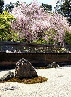 The Rock Garden / Ryouan-ji temple #japan #kyoto  http://www.japanesegardens.jp/gardens/famous/000039.php