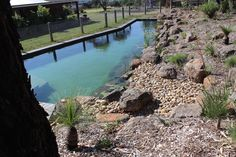 Natural Pools Australia,Naturalswimpools Australia, Pool,Natural Swimming Pool,S. Natural Swimming Pools, Swimming Pools Backyard, Swimming Pool Designs, Backyard Landscaping, Valley Pool, Diy Pond, Natural Pond, Pool Waterfall, Beautiful Pools