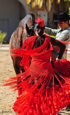 Подберём апартаменты по Вашему желанию; организуем Ваш отдых в Барселоне и Каталонии  встретим в аэропорту, проведем увлекательные экскурсии. Наши гиды - переводчики и трансферы в Барселоне  всегда к Вашим услугам. http://barcelonafullhd.com/ Flamenco y caballos