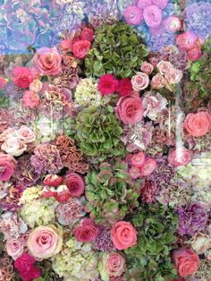 Live flower window display (flown in from Paris) at Dior on Rodeo Drive. (Hydrangea, roses, carnations and more.)