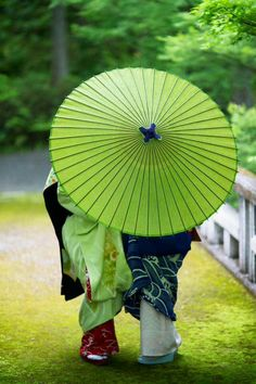 Green parasol in Japan