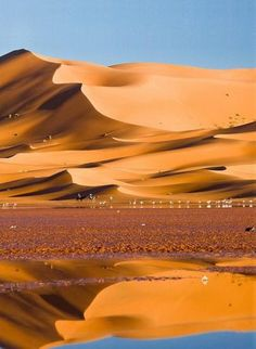 Merzouga, Morocco, in the Sahara Desert Beauty Around The World, Around The Worlds, Beautiful World, Beautiful Places, Deserts Of The World, Mekka, Les Continents, Desert Life, Landscape Pictures
